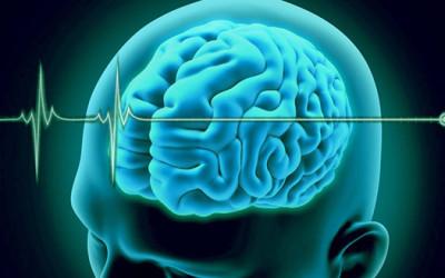 Muerte Cerebral – La Importancia de Hacer el Diagnóstico